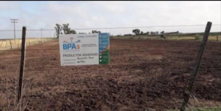 DIFERENTES ACTIVIDADES DESDE EL MINISTERIO DE AGRICULTURA